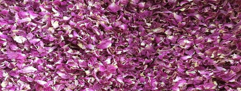 Dried rose petals for sale