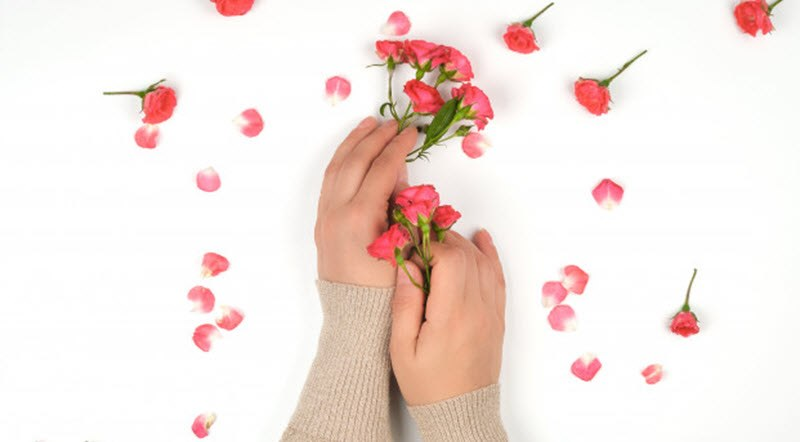 dried rose buds wholesale - Skin and Hair Properties