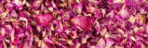 Rose Products – Dried Rose Petals