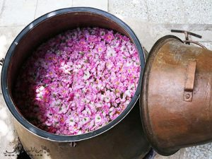 best rose water wholesale price in the world,rose water wholesale price,rose water wholesale,rose petals wholesale,rosewater wholesale,rose water wholesale suppliers,rosa damascena,rosewater,damask rose