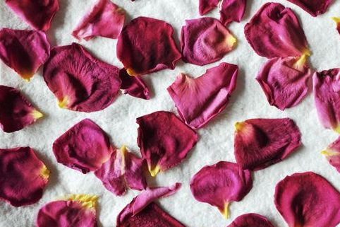 how to dry edible rose petals